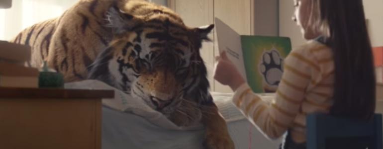 A tigrisek kérnek segítséget a WWF karácsonyi reklámjában