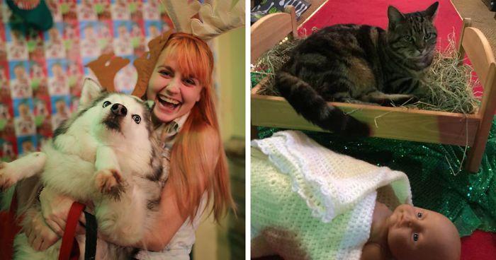 25 cica és kutya, akik egyszerűen utálják a karácsonyt