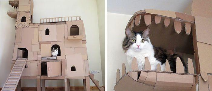 Kartondobozokból igazi palotát épített macskájának a kreatív gazdi