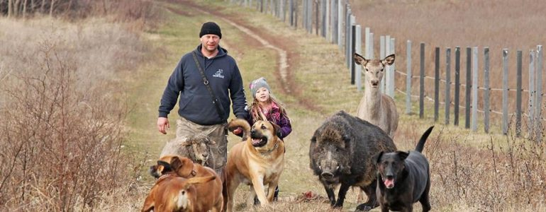 A vaddisznó, a szarvas és a kutyák sétálni mennek, te meg nem hiszed el, hogy ilyen létezik