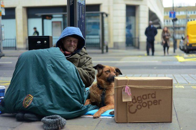 Együtt jóban és rosszban – Megható fotók az utcára került gazdikról és kutyusaikról