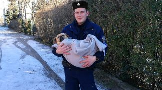 Medencébe esett kutyust mentettek a szentendrei rendőrök