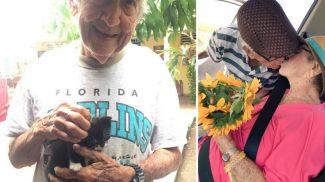 Ez a cuki nagypapa feleségével dacolva, titokban nevelgetett egy egész macskafamíliát