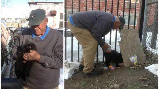 Munkát vállal és keményen dolgozik a nyugdíjas bácsi, hogy ellássa a környéken élő kóbor cicákat